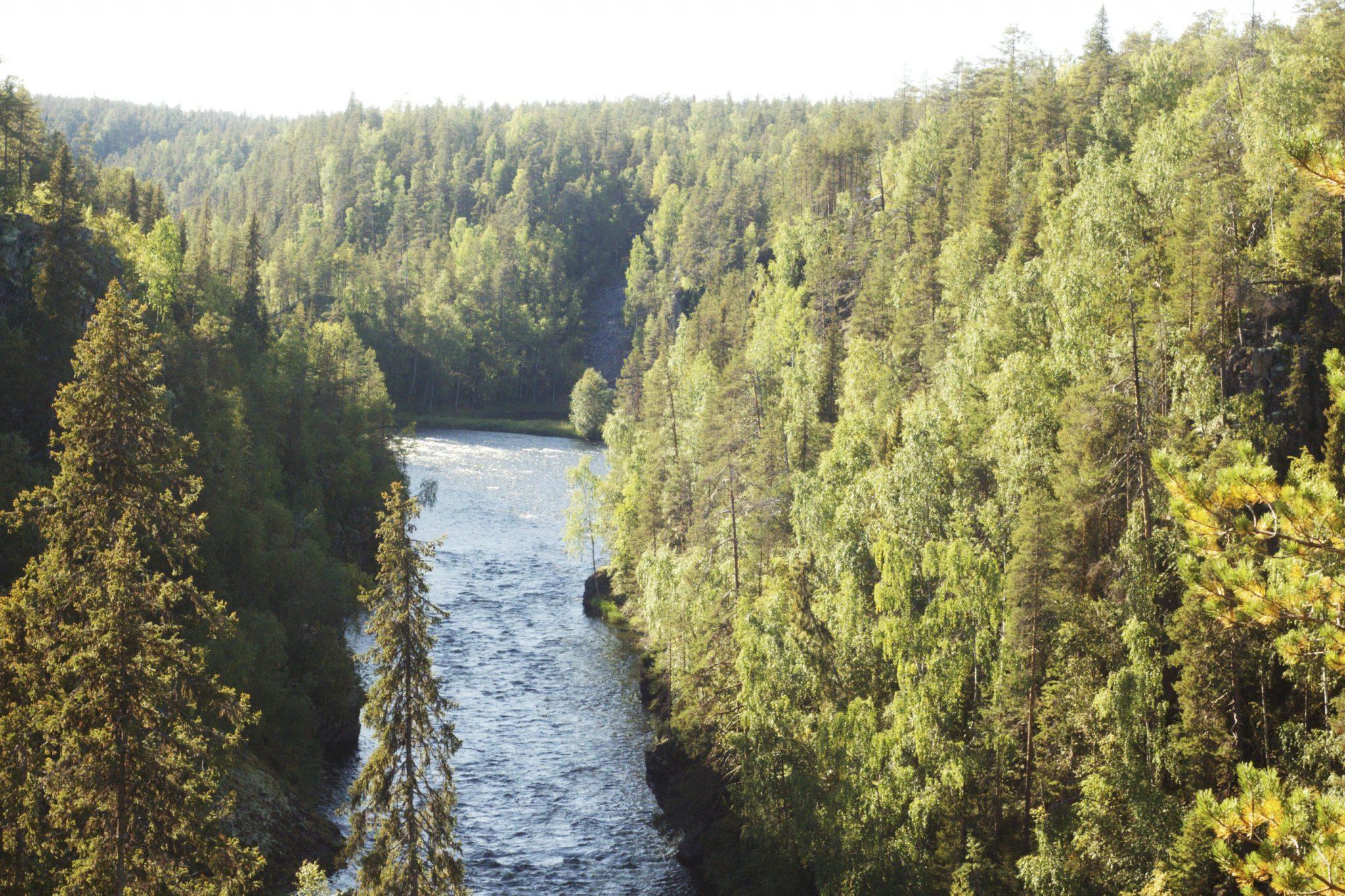 pieni karhunkierros, oulanka national park, vaeltaminen Kuusamossa, hiking in finland