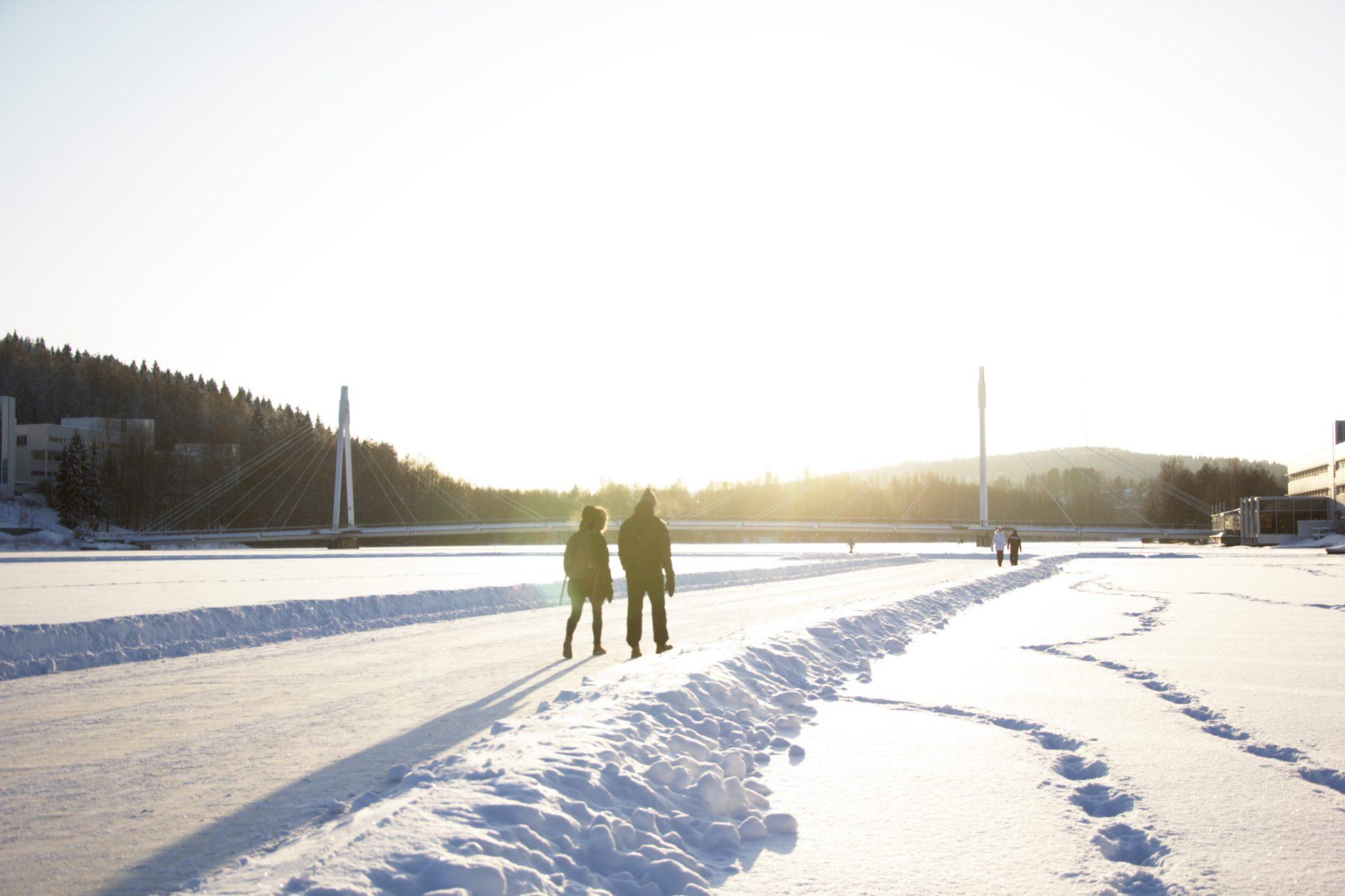 Jyväsjärvi, Mitä jyväskylässä voi tehdä